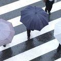 面接当日の天気は雨!持って行く傘の種類と注意点は?