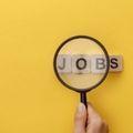 珍しい仕事を紹介!正社員求人や高収入が得られる職種も