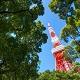 地方出身者が上京して就職する際のポイントをご紹介